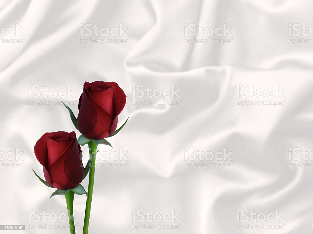 two red roses and white satin valentine's day card background stock photo