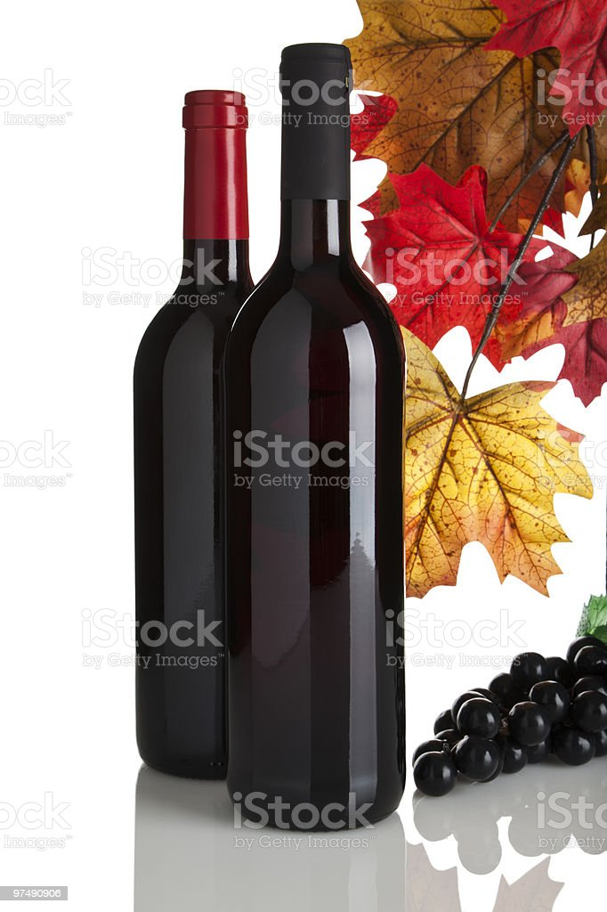two red wine bottles, fall leaves and grapes royalty-free stock photo