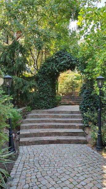 Two retro streetlight lanterns by sides of paved path with steps in park with green hedge arch stock photo