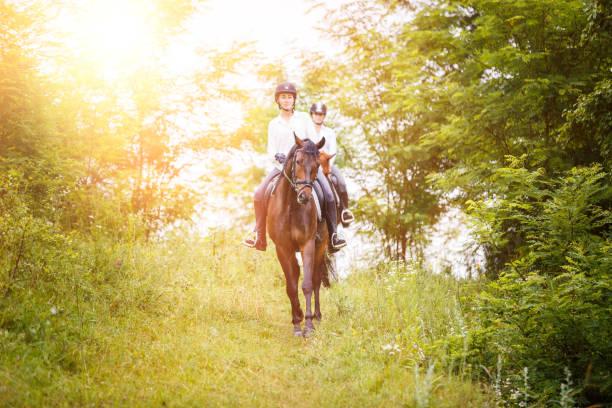 mujer dos jinete a caballo bajando de la colina - equitación fotografías e imágenes de stock