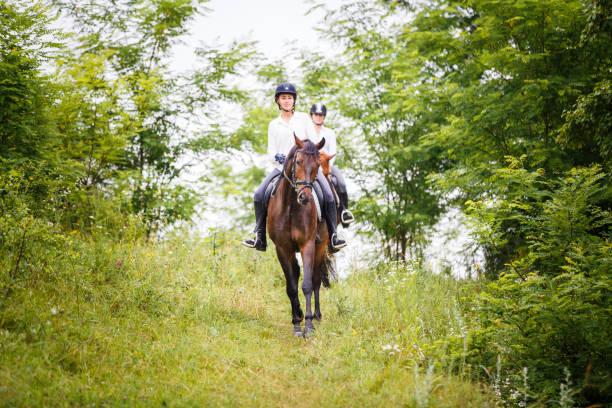 Zwei Reiter Frau auf Pferden aus den Hügel hinunter – Foto