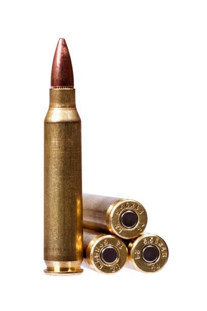 two rifle bullets ammunition - proiettile foto e immagini stock