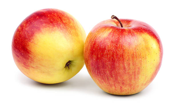 Two ripe red-yellow apples. stock photo