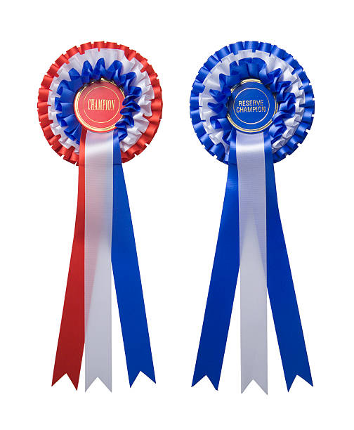 Two rosettes stock photo