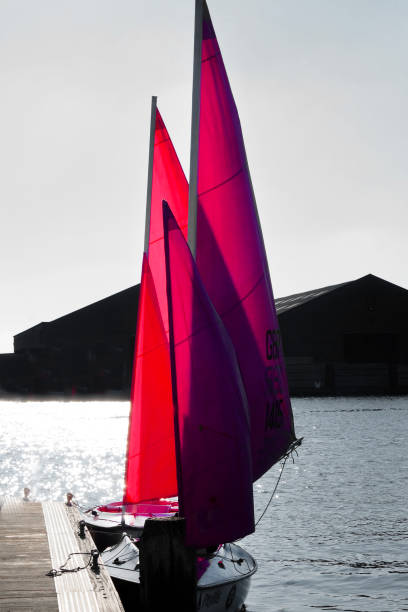 two sailing boats with red sails in Shoreham Harbour, England, Two sailing dinghies moored close together next to a wooden pontoon, both dinghies have bright red sails back lit by the sun, Shoreham Harbour, East Sussex, England, UK, sailing dinghy stock pictures, royalty-free photos & images