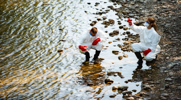 Two scientists exploring water in river