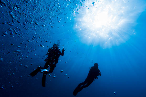 two scuba divers on fernando de noronha against sunburst - underwater diving stock photos and pictures