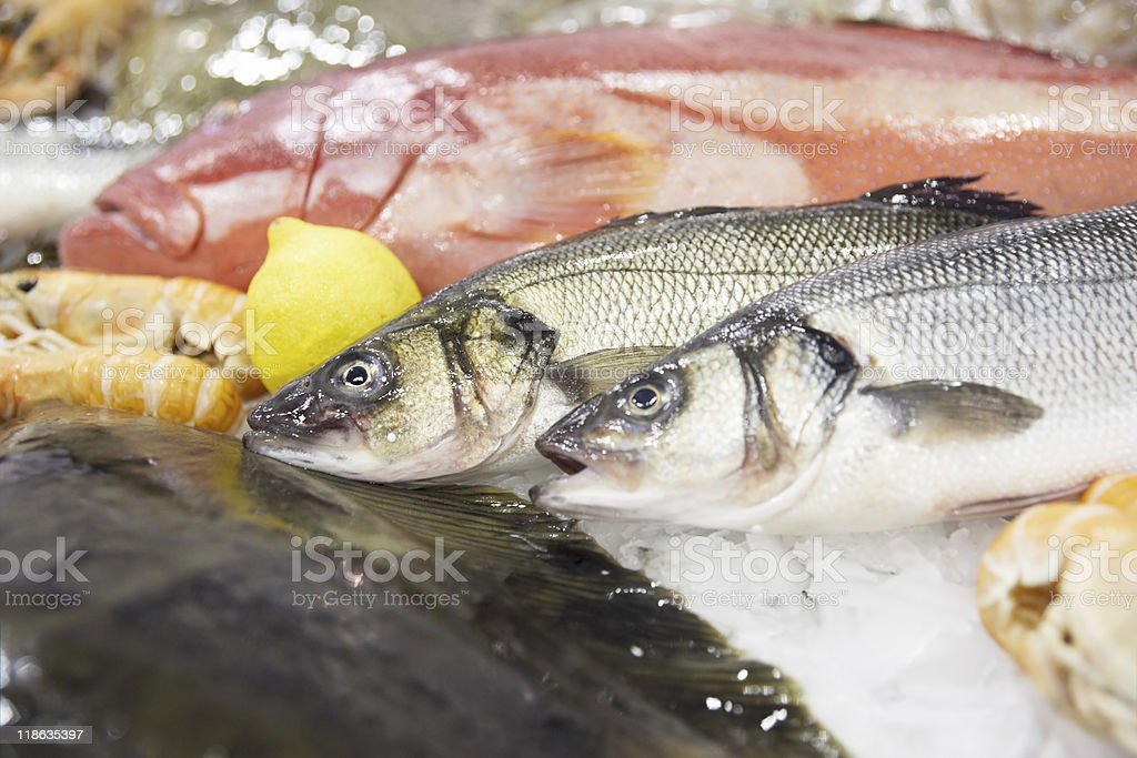 Two seabasses and other seafood royalty-free stock photo