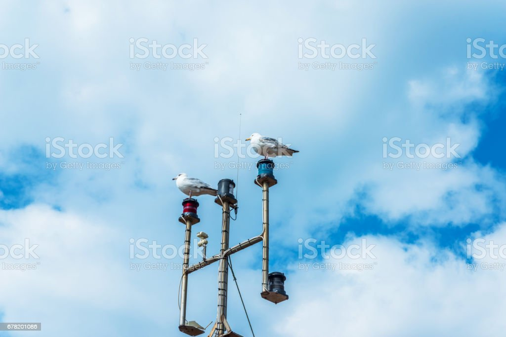 Two seagulls on the mast of the ship, in the coastal town, wild birds, blue sky and clouds stock photo