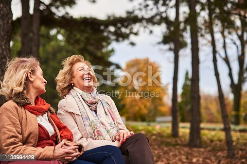 istock Two senior friends at the park. 1133994429