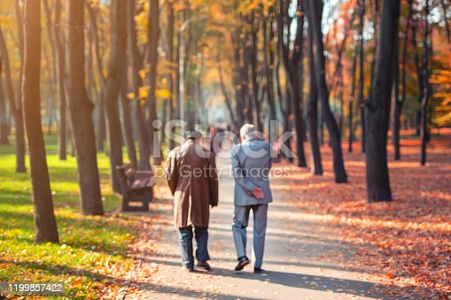 istock Two senior friends man walking along beautiful colorful autumn city park. Pair of old age persons talking during walk at beautiful multicolored fall tree valley. Retirement and pension concept.Blurred 1199857422