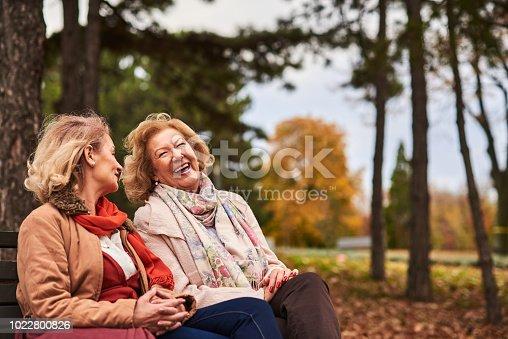 istock Two senoir woman at the park 1022800826
