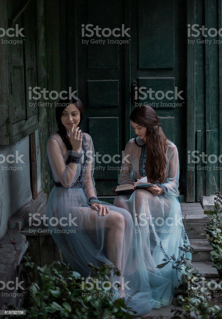 3fd473070afd Two sexy brunettes in elegant vintage dresses Lizenzfreies stock-foto