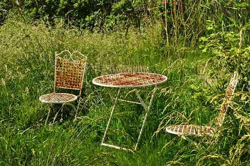 two shabby and weathered rusty chairs and a table of metal in a wild garden with long green grass