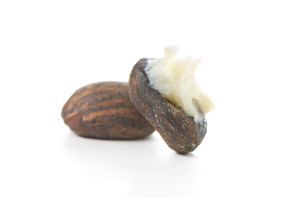 two shea butter nuts with butter on white - foto stock