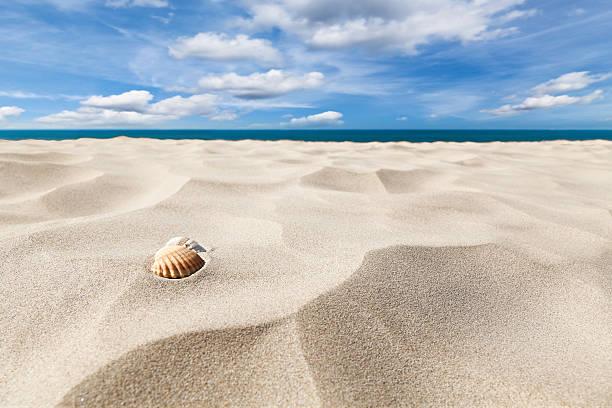 Dos recubrimientos vacíos en una playa de arena - foto de stock
