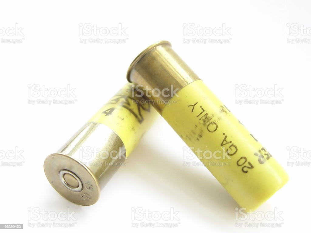 Two Shot Gun Bullets - Royalty-free Accessibility Stock Photo