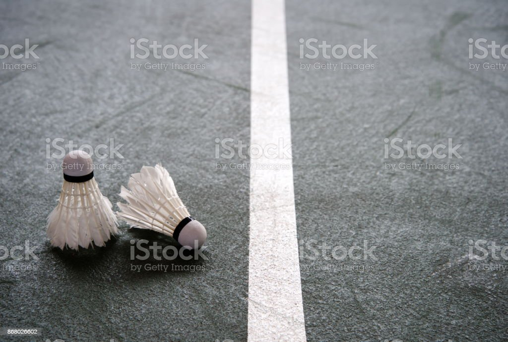 two shuttlecocks for badminton sport playing on dark green for with white line in gymnasium background stock photo