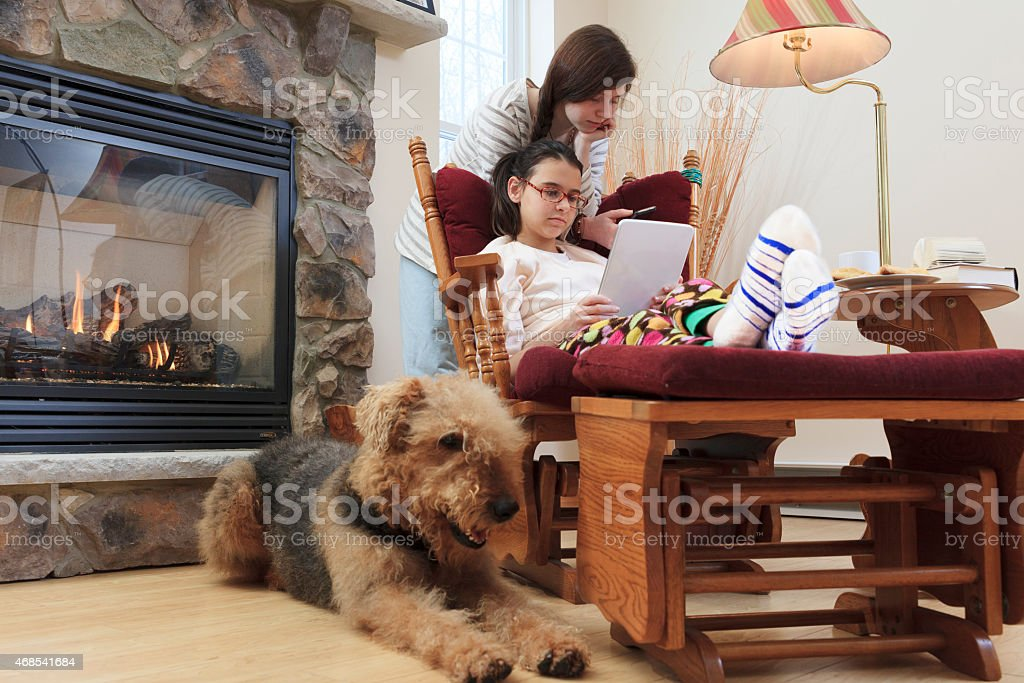 Two sisters, teenager girls, and dog in living room stock photo