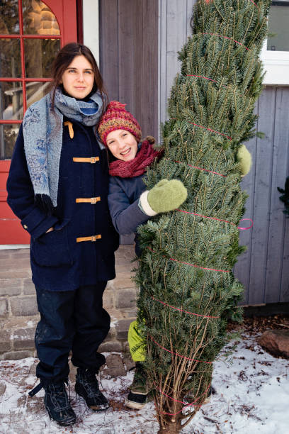 Two sisters with freshly cut Christmas tree in front of house outdoors. Two sisters portrait with freshly cut Christmas tree in front of house outdoors. There is a bit of fresh snow on the ground. They are looking at the camera. Vertical full length outdoors shot with copy space. This was taken in Quebec, Canada. 12 17 months stock pictures, royalty-free photos & images