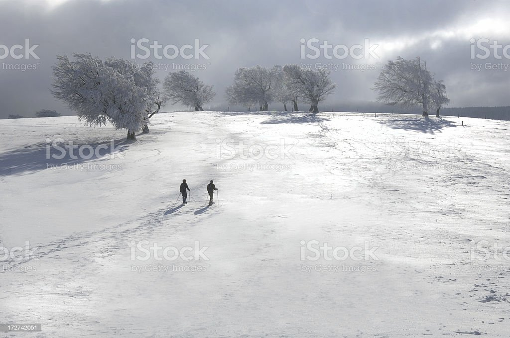 Two skier in winter landscape royalty-free stock photo