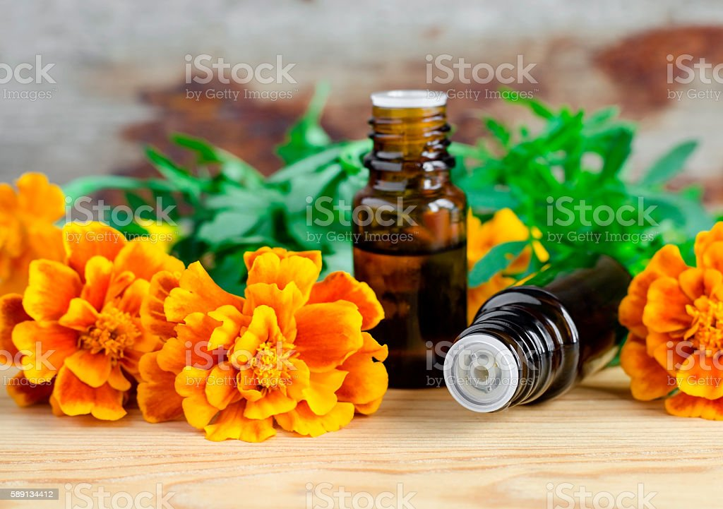Two small bottles of essential marigold oil stock photo