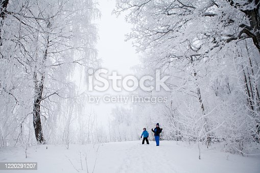 istock Two small boys, brothers,  playing in beautiful winter forest with tall tress covered in frost, ice and snow, real childhood and bonding 1220291207