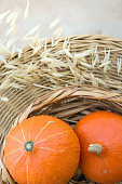 istock Two Small Bright Orange Heirloom Pumpkins in Wicker Basket Dry Autumn Plants on Rattan Table on Terrace. Cozy Fall Atmosphere. Kinfolk Hygge. Thanksgiving Poster 1005374546