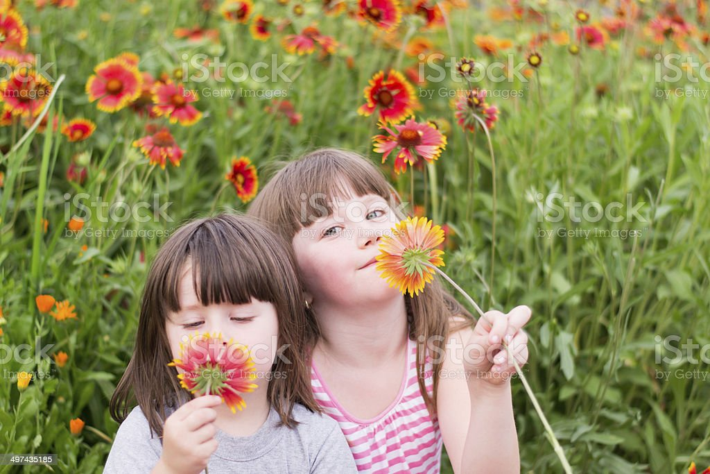two small children with flowers stock photo