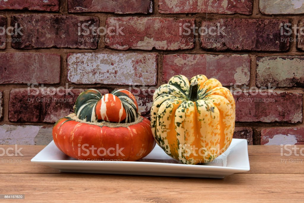 Two squash vegetables aginst a red brickwall. royalty-free stock photo