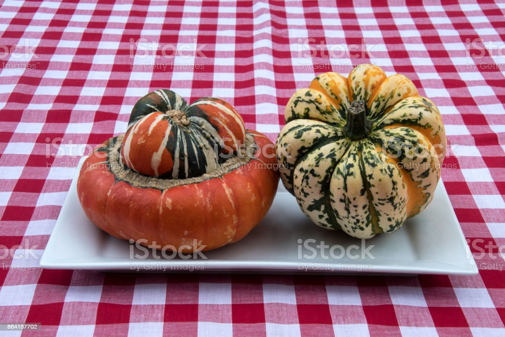 Two squash vegetables on a white plate royalty-free stock photo