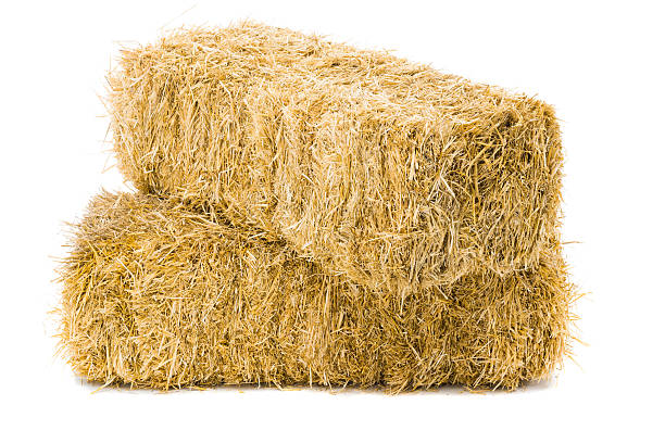 two stacked bales of hay on white background - aluxum stock pictures, royalty-free photos & images