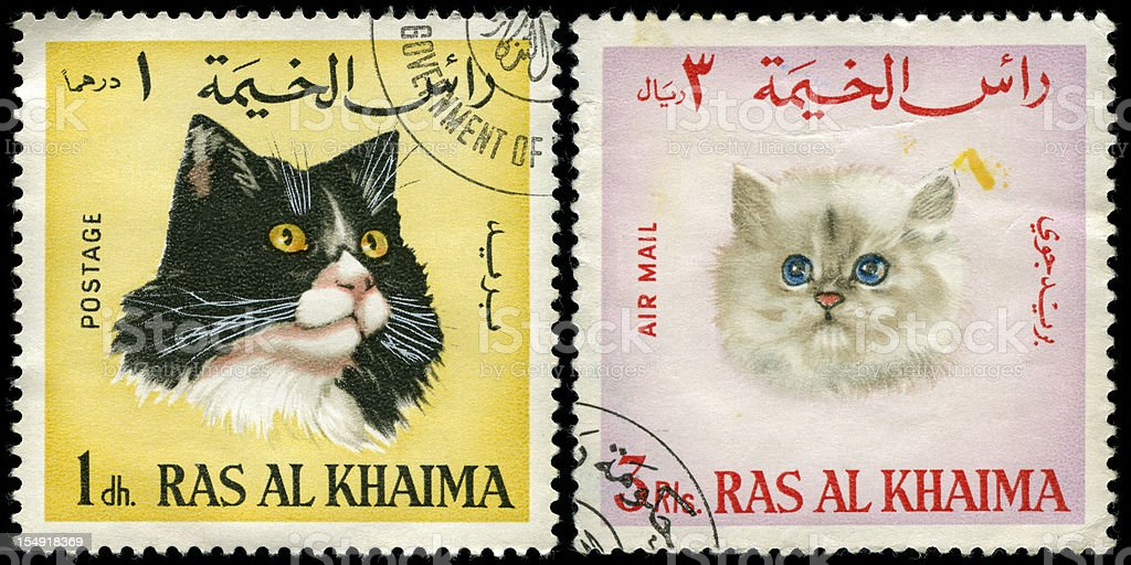 Two stamps from the UAE depicting pedigree cats royalty-free stock photo
