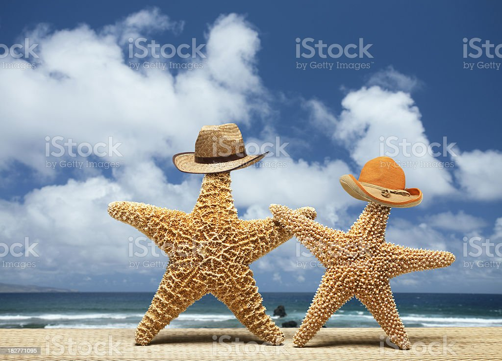 Two starfish with male and female hats royalty-free stock photo
