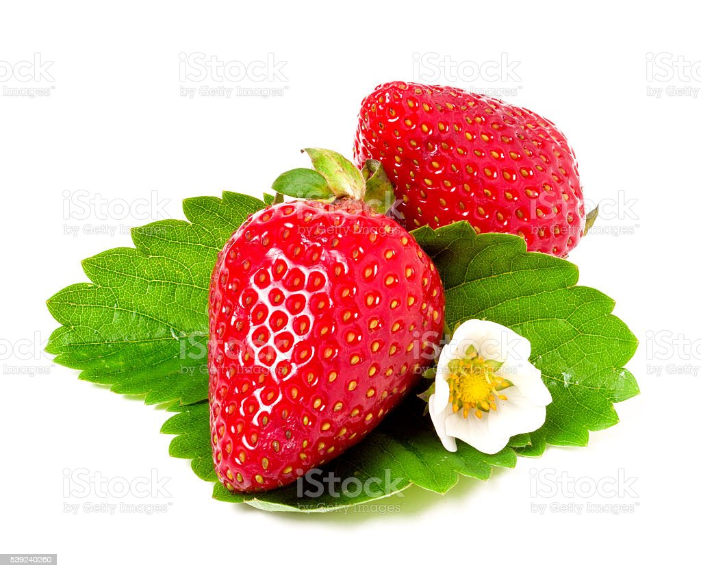 two strawberries with flower and leaves isolated on white background royalty-free stock photo