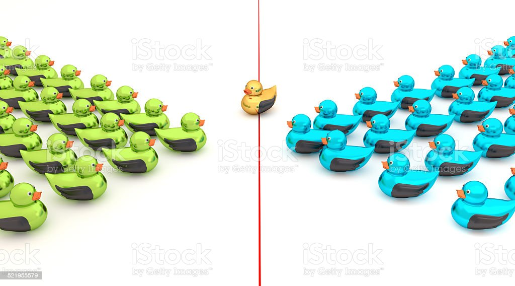 Two teams of Ducks stock photo
