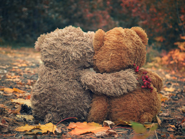 Two Teddy bear hugging each other and looking at the autumn forest stock photo