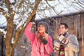 Two Teenagers Hanging Fairy Lights In Tree With Icicles