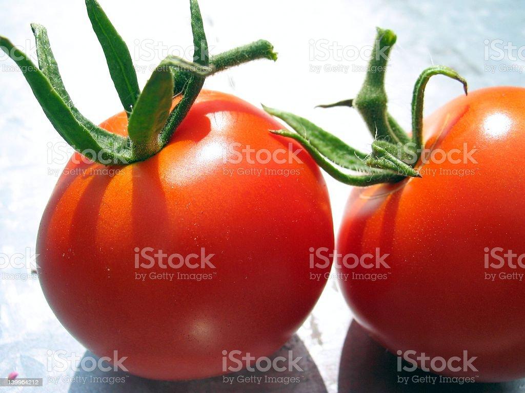 Two Tomatos royalty-free stock photo
