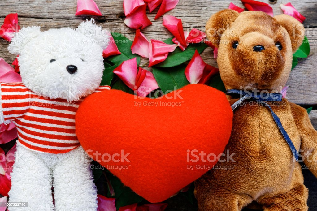 Two Toy bear doll have falling in love with Rose petals background in...