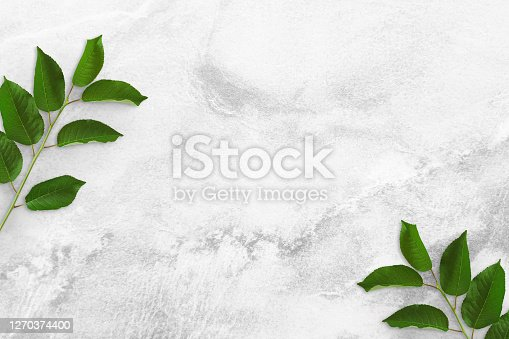 istock Two tree branches with green leaves at the edges on a concrete table. Old white and gray concrete background. Advertising board, poster mockup for your design. Flat lay, top view, copy space 1270374400