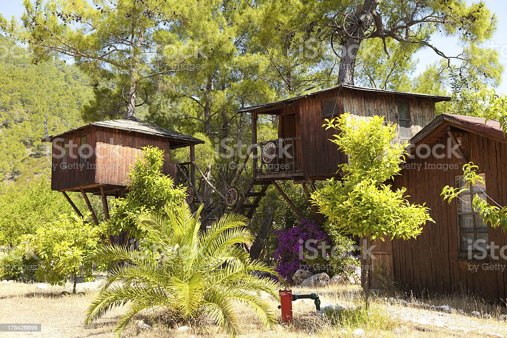 Two tree houses next to a cabin in the woods stock photo