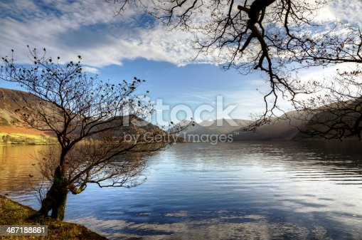 Two trees on the shore of Ennerdale water on a sunny winters day