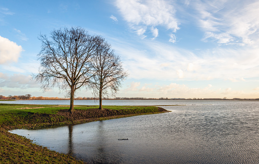 istock Two trees with bare branches on a spit of land in the water 1094539610