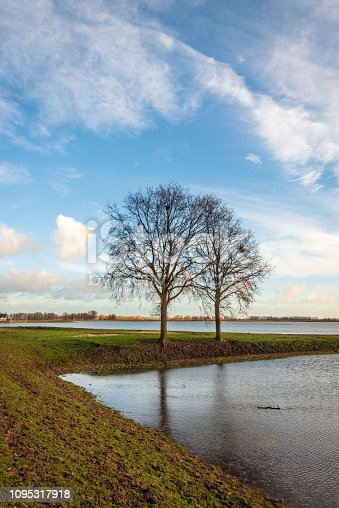 istock Two trees with bare branches on a spit of land in the water 1095317918