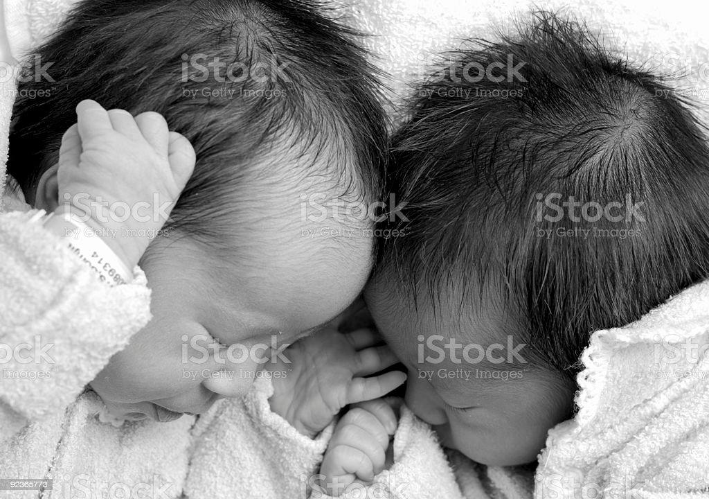 Zwei Zwillinge Sich zusammenrollen Lizenzfreies stock-foto