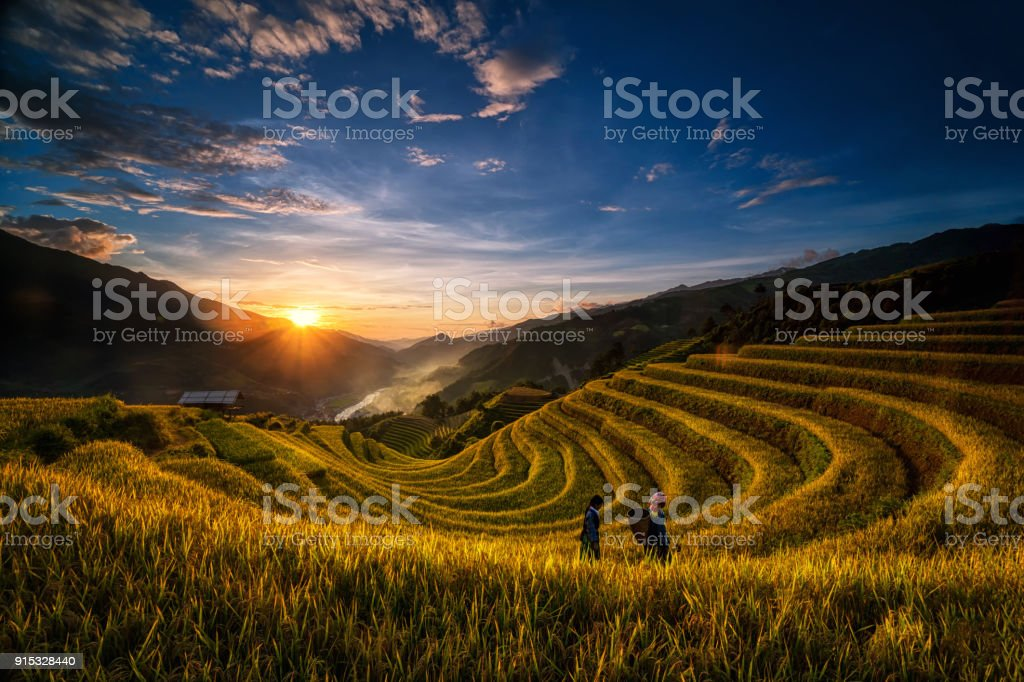 Two undefined Vietnamese Hmong are walking in the fantastic landscape of rice field terrace for prepare harvest when sunrise at Northwest Vietnam. Mu Cang Chai, Yen Bai province, Vietnam stock photo