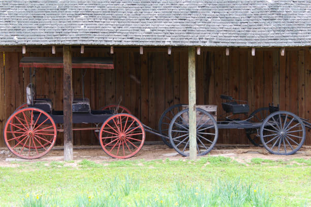 two vintage horse cart trap vehicle rustic barn building stock photo