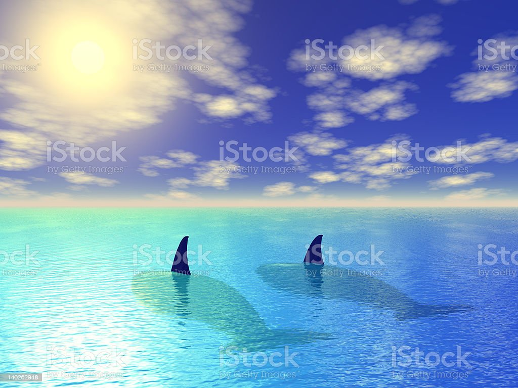 two whales in blue lagoon royalty-free stock photo