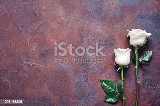 Two white roses on a beautiful textured stone background.